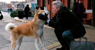 Siempre a tu lado Hachiko - concurso SEO el perro arcoiris sonrie en CICE