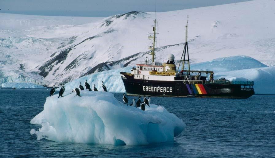 MV Greenpeace в Антарктике