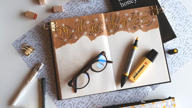 O que é um Omni Journal e como funciona?