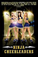 Ninja Cheerleaders (2008) Dual Audio [Hindi-English] 720p BluRay ESubs Download