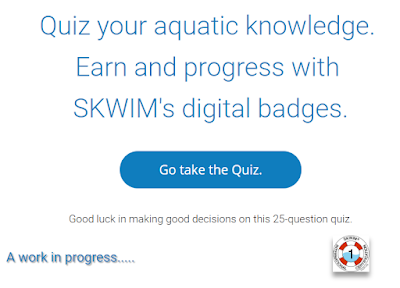 Come to SKWIM.us for water safety quiz taking