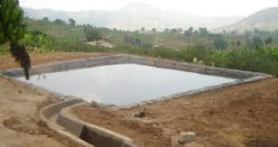 Learn why rainwater harvesting is important | how to get started | how to get it right