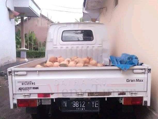 Pickup Muat Kelapa, Amblas Digondol Maling