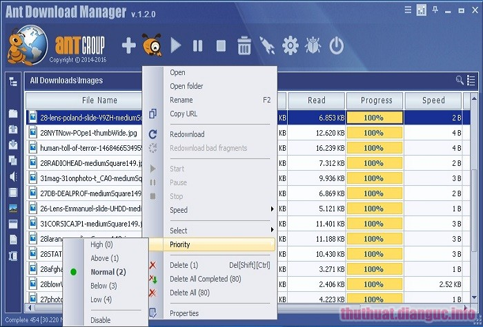 Download Ant Download Manager Pro 1.14.2 Full Crack