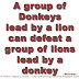 A group of Donkeys lead by a lion can  defeat a group of lions lead by a donkey ~Socrates