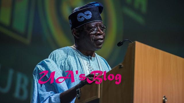 Lagos APC Backs Tinubu To Become President In 2023