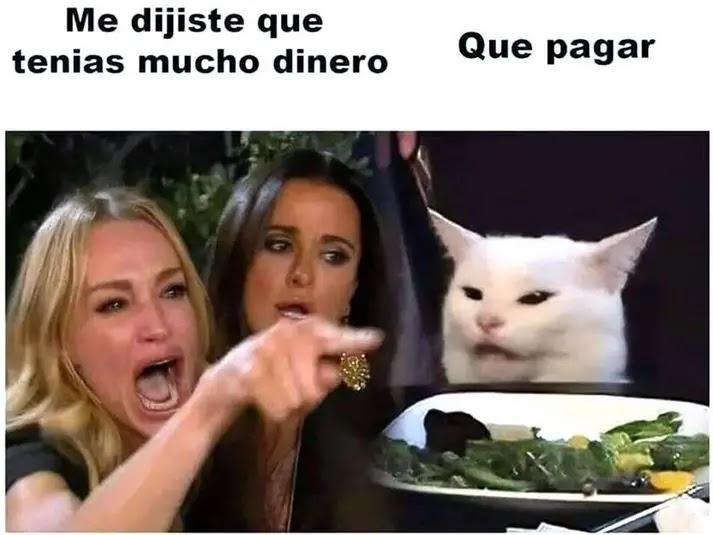 Smudge, el famoso gato de los memes