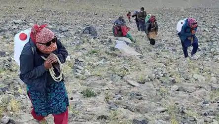 বিনা পারিশ্রমিকে হাসিমুখে রোজ সেনাবাহিনীকে সাহায্য করে চলেছে লাদাখের গ্রামবাসীরা