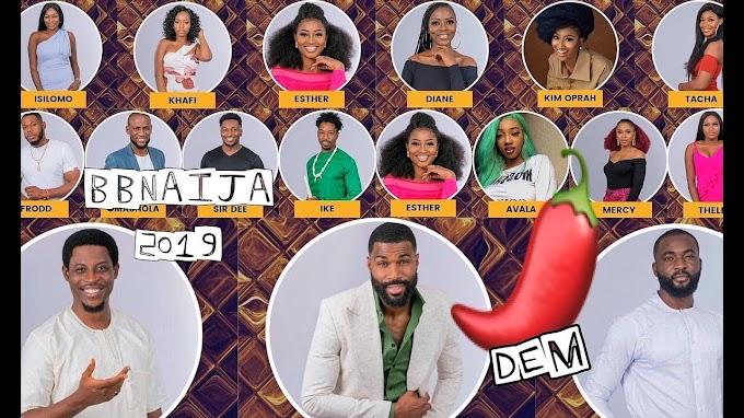 BBNaija 2019: How to vote for favourite housemates
