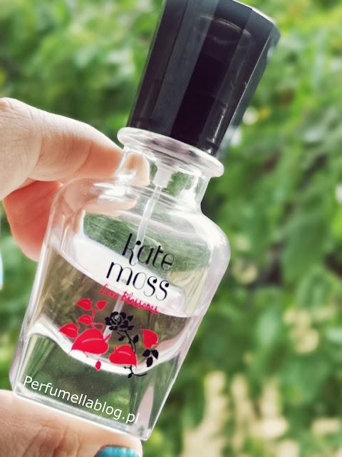 gdzie kupić perfumy kate moss