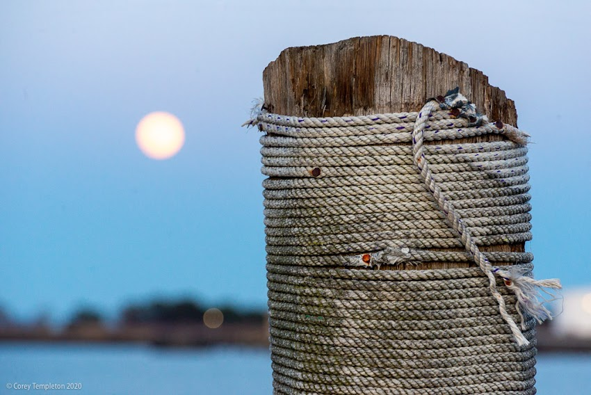 April 2020 photo by Corey Templeton. Portland, Maine USA. The moon rising beyond a weathered wooden bollard at the end of Portland Pier.