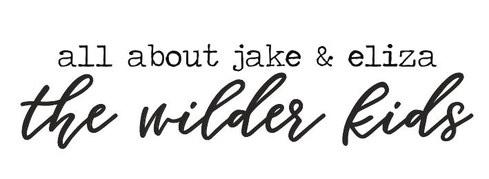 http://www.livealittlewilderblog.com/p/expecting-baby-jake.html