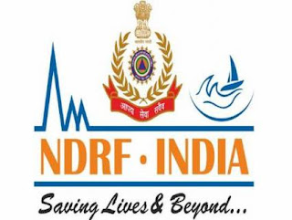 ndrf-director-post-created
