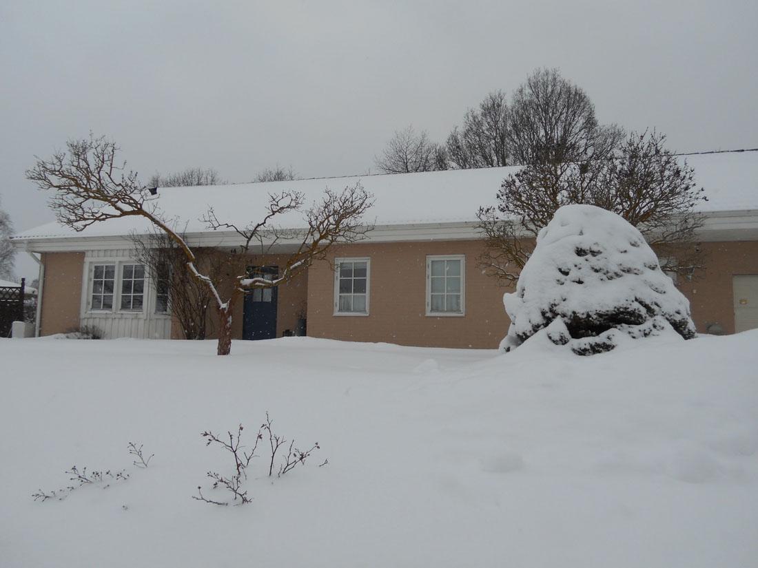 9 febbraio e nevica