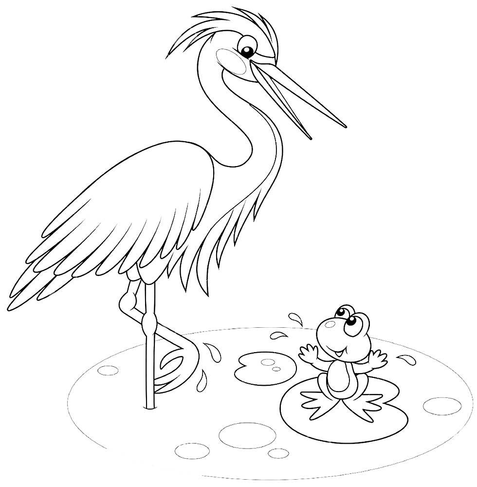 Mewarnai Gambar Burung Bangau 6