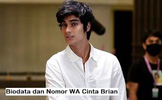 Nomor Whatsapp Cinta Brian