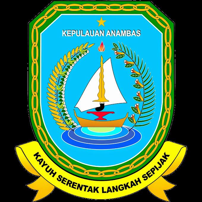 Hasil Hitung Cepat Pilkada/Pilbub Kepulauan Anambas 2020