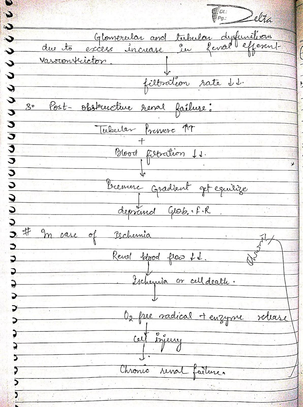 pathophysiology - renal disorder acute renal failure