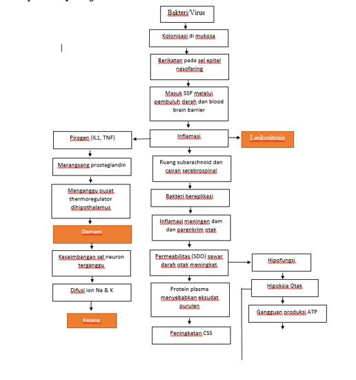 Penurunan Kesadaran Et Causa Suspek Meningoencephalitis - Final Concept Map (Patofisiologi, etiologi, dll)
