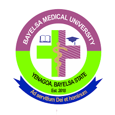 BMU Pre-Degree (Foundation) Admission Form 2020/2021