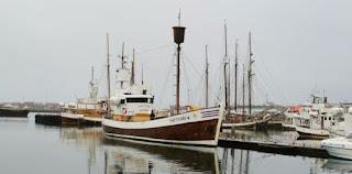 Húsavík, North Sailing, avistamiento de ballena, Islandia, Iceland.