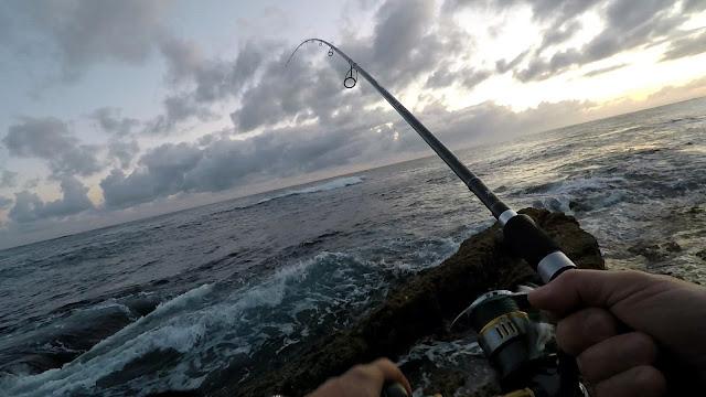 CA%25C3%2591A - La pesca del pez aguja con señuelos artificiales