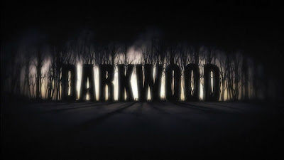 Download Darkwood Game For PC