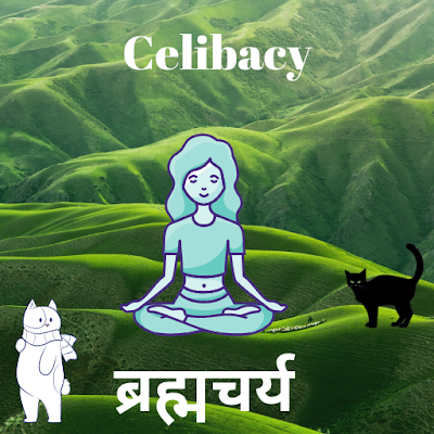 Why practice Celibacy ? ब्रह्मचर्य क्यों ?