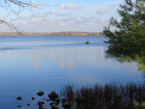 Hamlin Lake from Island Trail Ludington State Park