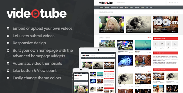 wp video theme