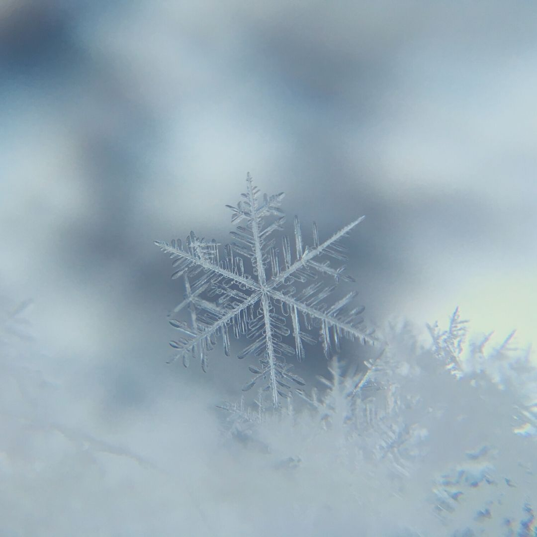Snowfall | Read an excerpt from one of my short stories.