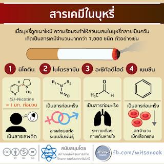 ความรู้เรื่องบุหรี่ และ ภัยอันตรายของบุหรี่ [วิทย์สนุกรอบตัว]