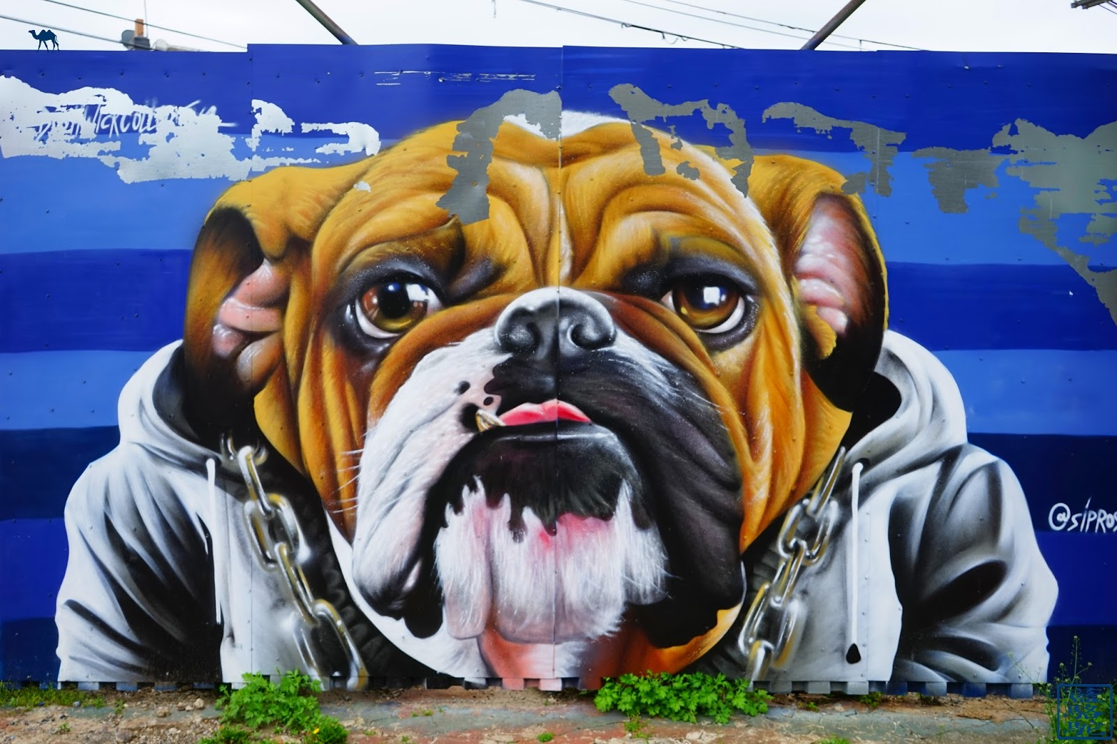 Le Chameau Bleu - Street Art Bushwick 2017 - Bouledog