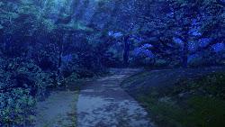 anime landscape forest background outdoor animelandscape