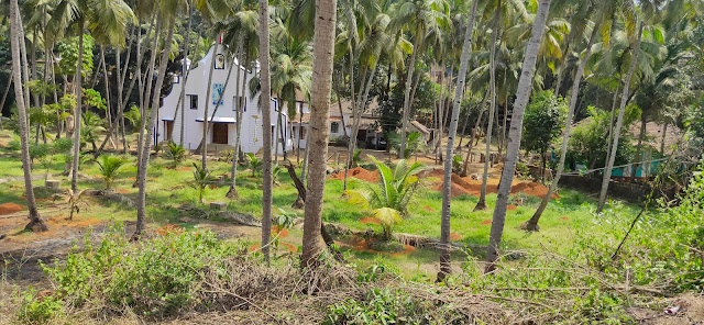Honeymoon in Goa