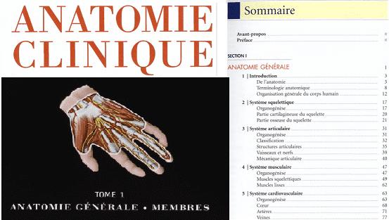 anatomie Generale, Membres