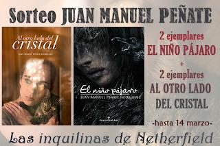 http://inquilinasnetherfield.blogspot.com.es/2018/02/sorteo-2-ejemplares-el-nino-pajaro-2-ejemplares-al-otro-lado-del-cristal.html