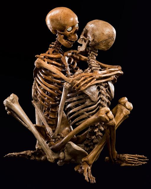 Jean-Marc Laroche - Skelet sex i lotus-stillingen
