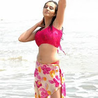 Wet Anuradha Mehta At Beach Stills