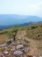 Тропинка на склоне Чатырдага по пути на Эклизи-Бурун
