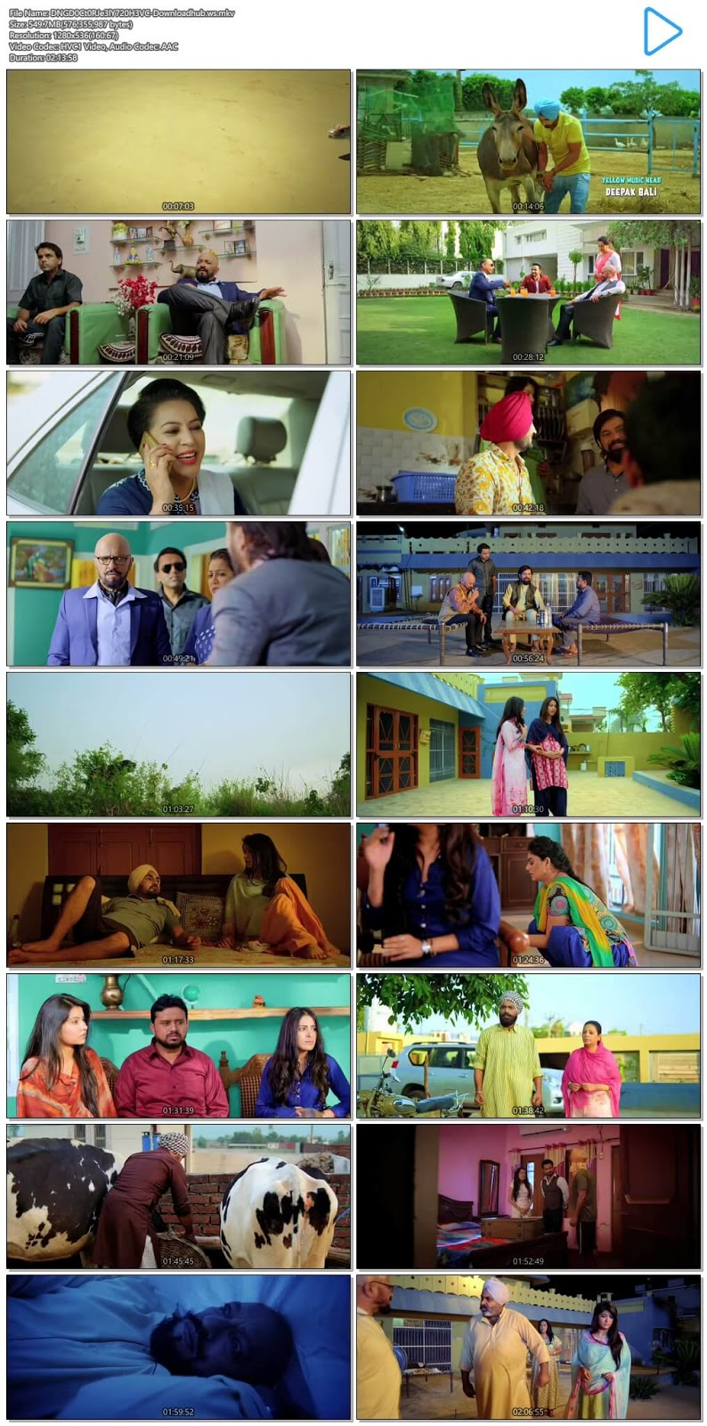 Dangar Doctor Jelly 2017 Punjabi 720p HEVC HDRip