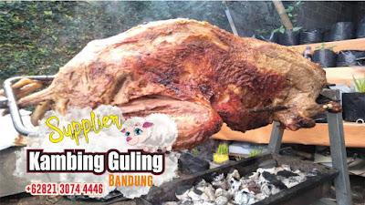 Jual Kambing Guling Lembang 082103744446, Kambing Guling Lembang, Kambing Guling,