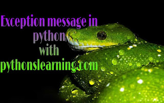 How to get exception message in python