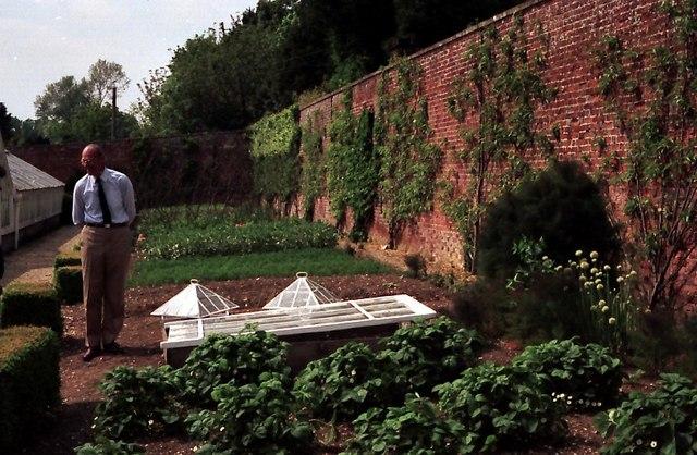 Harry Dodson S Practical Kitchen Garden
