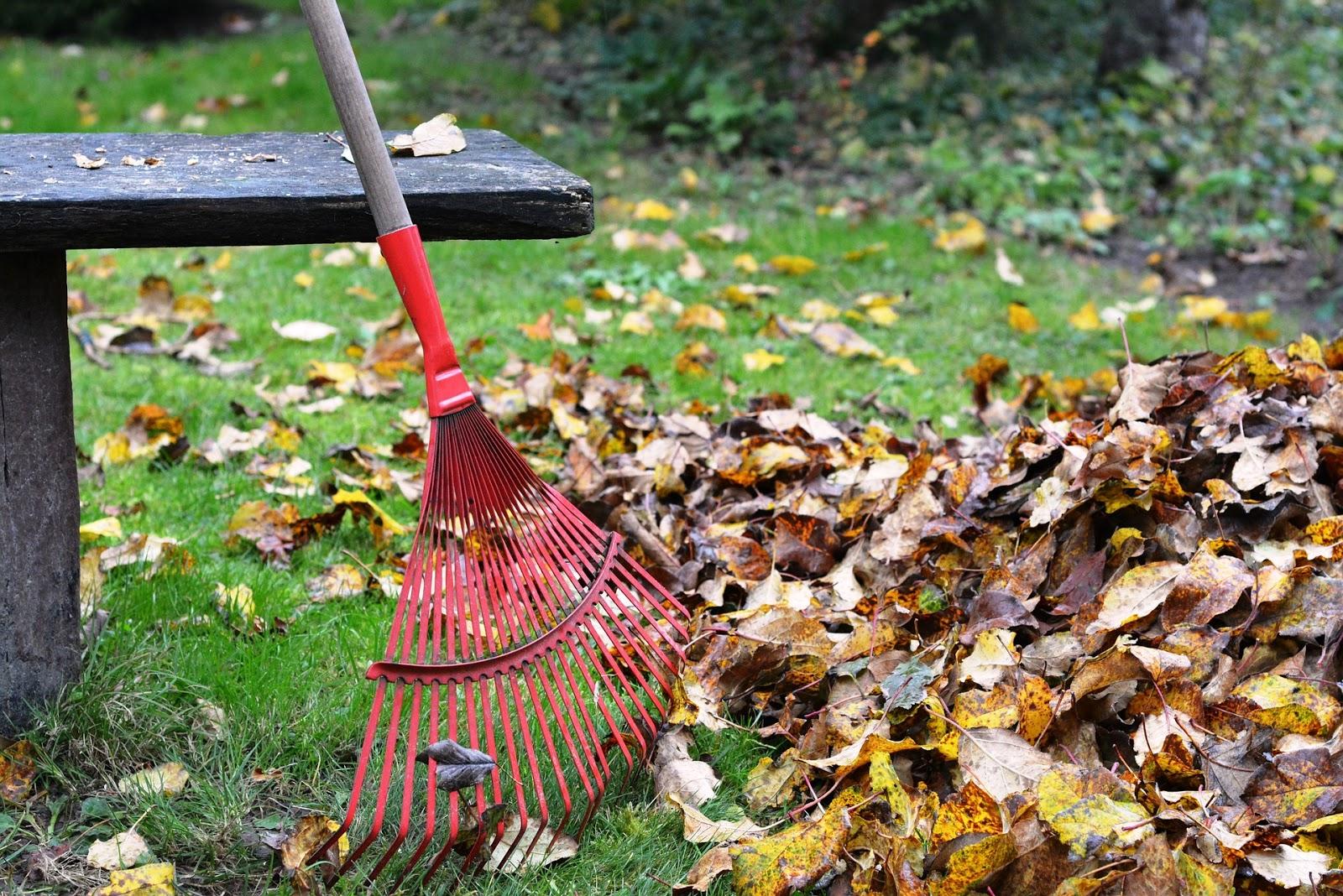 calendrier travaux jardin octobre