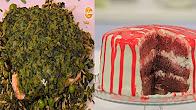 طريقة عمل سالمون بكريمة جوز الهند - طاجن عكاوي بالخضار - تورتة موزاييك - عدس برول الزبدة والثوم مع رانيا الجزار في نص مشكل 3-2-2017