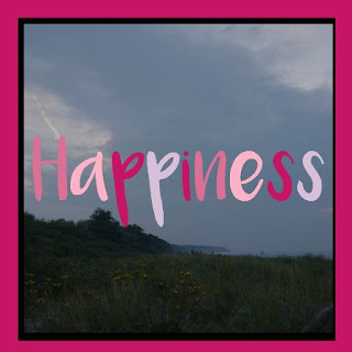 http://happyandcity.blogspot.de/search/label/Happiness