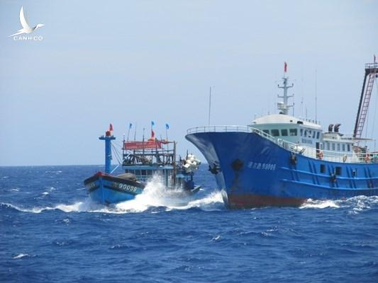 Tàu cá Bình Định bị tàu Trung Quốc truy đuổi trái phép tại khu vực Trường Sa