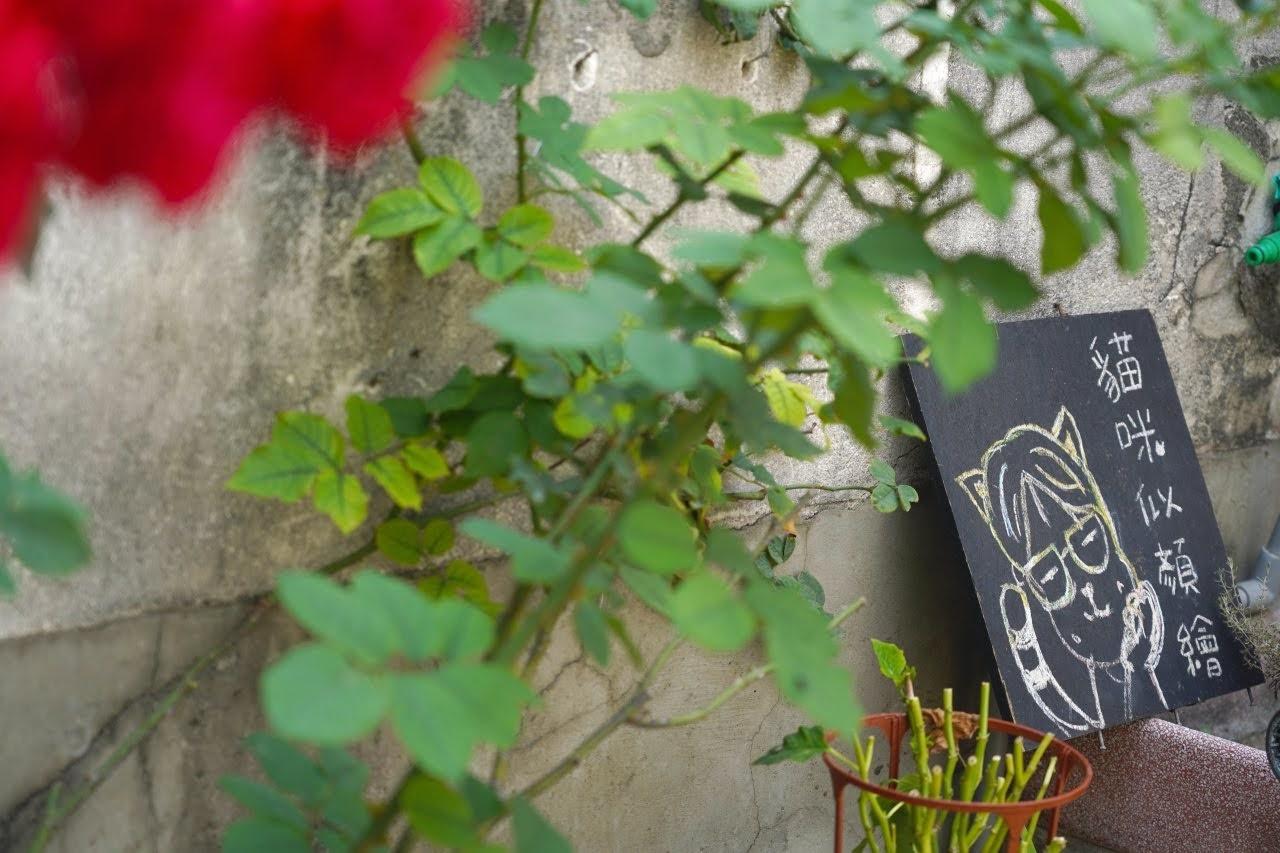 【台南|中西】拾參馬卡龍,正興街老屋伴手禮,減糖馬卡龍,糖分減少美味依舊,散步品嚐、送人兩相宜!季節限定口味,時時變換!🍃
