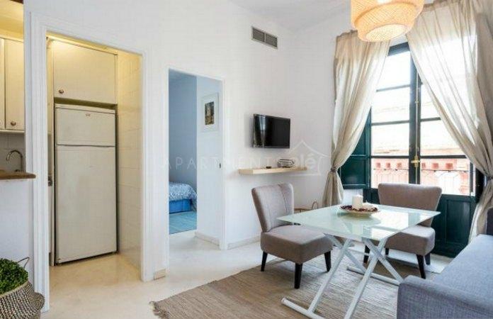 Vistas de salón, cocina y dormitorio de un apartamento turístico en Sevilla.